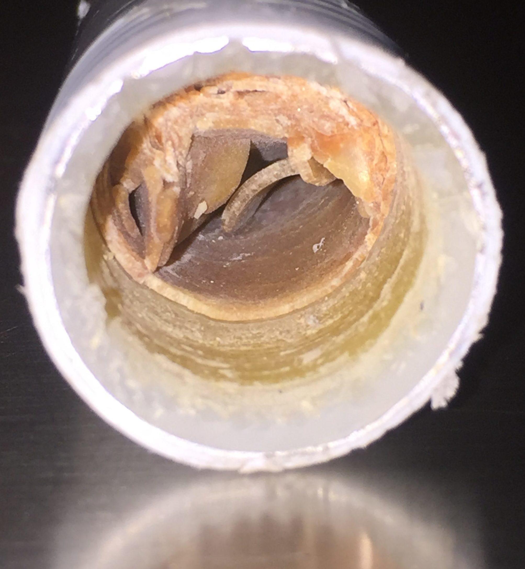 Calcaire dans un tuyaux